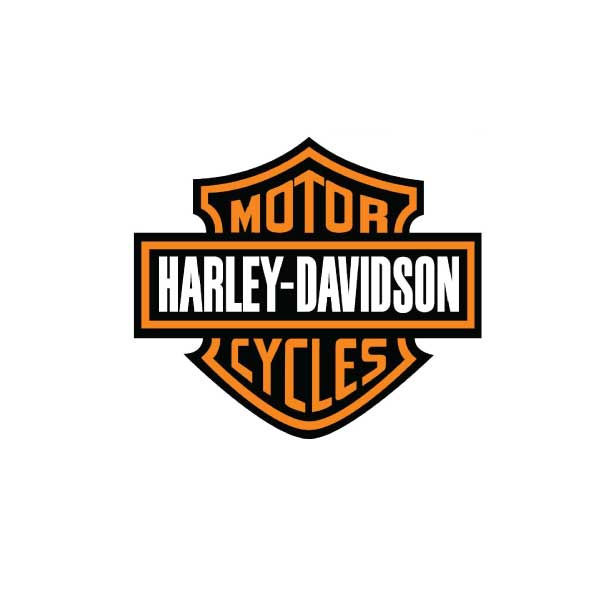 a company background information of harley davidson You are here: home about history  now with over 30 years in the motorcycle  business and in his 22nd year at harley-davidson® of charlotte, ken lipack is.